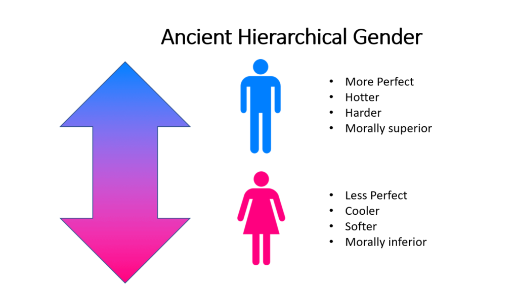 Diagram of ancient hierarchical gender model